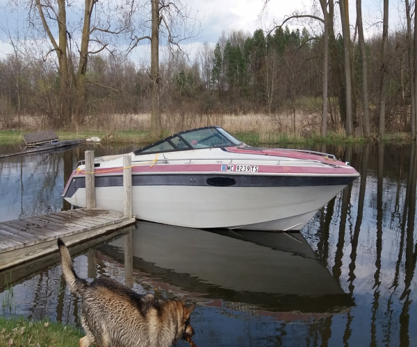 Used Century Boats For Sale in Michigan by owner   1991 Century 3500