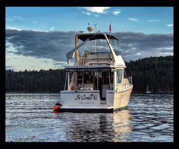 Used Bayliner Boats For Sale in Washington by owner | 1996 Bayliner 3988