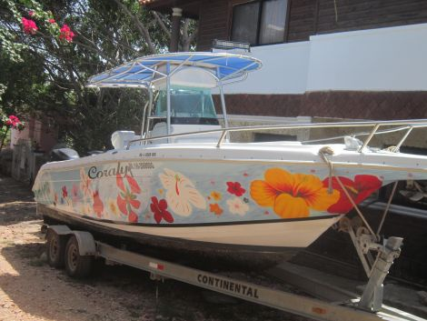 Used Power boats For Sale in Dominican Republic by owner | 2003 26 foot Mercruiser Mercraft