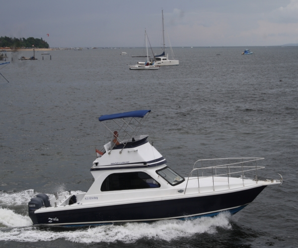 Used Power boats For Sale in Australia by owner   2015 Bali Boat Fly39