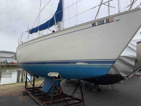 Used Sabre MK III Boats For Sale by owner | 1986 30 foot Sabre MK III