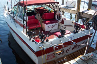 Used Chris Craft Boats For Sale in Michigan by owner   1984 CHRIS CRAFT 332 Commander