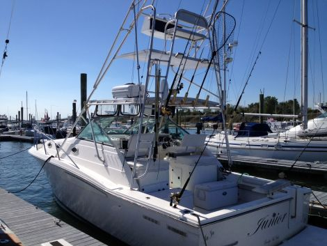 Used Wellcraft Boats For Sale by owner | 1999 Wellcraft Coastal 330